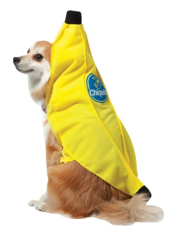 chiquita-banana-dog-costume